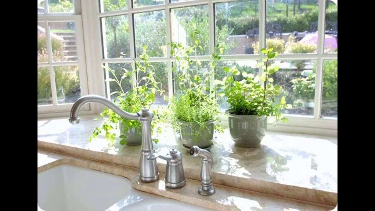 kitchen herbs