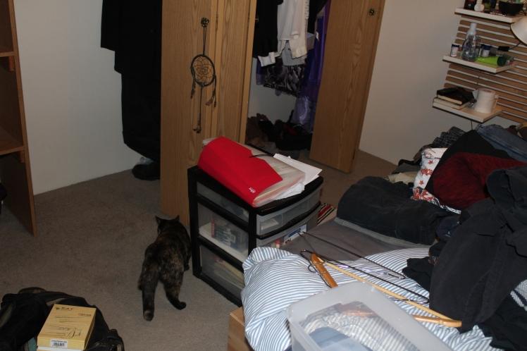 closet-clothes everywhere4